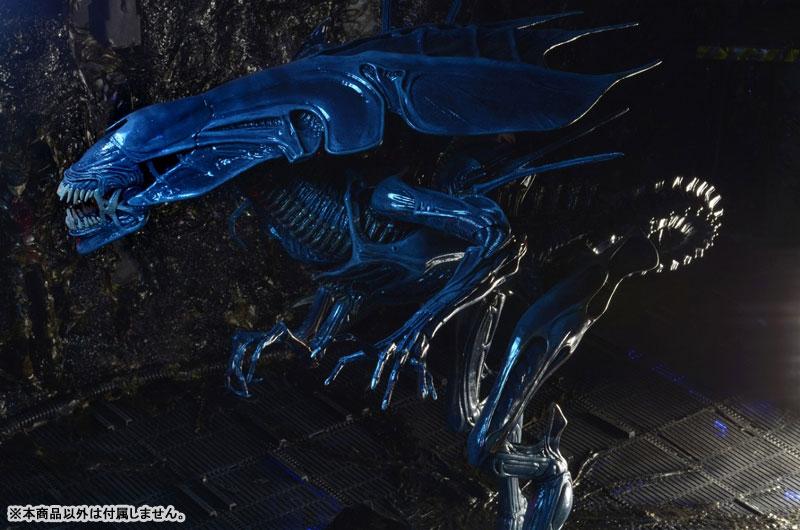 【再販】エイリアン/ 7インチ アクションフィギュア シリーズ『ウルトラデラックス:エイリアン・クイーン』可動フィギュア-007