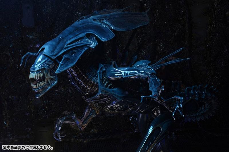 【再販】エイリアン/ 7インチ アクションフィギュア シリーズ『ウルトラデラックス:エイリアン・クイーン』可動フィギュア-008
