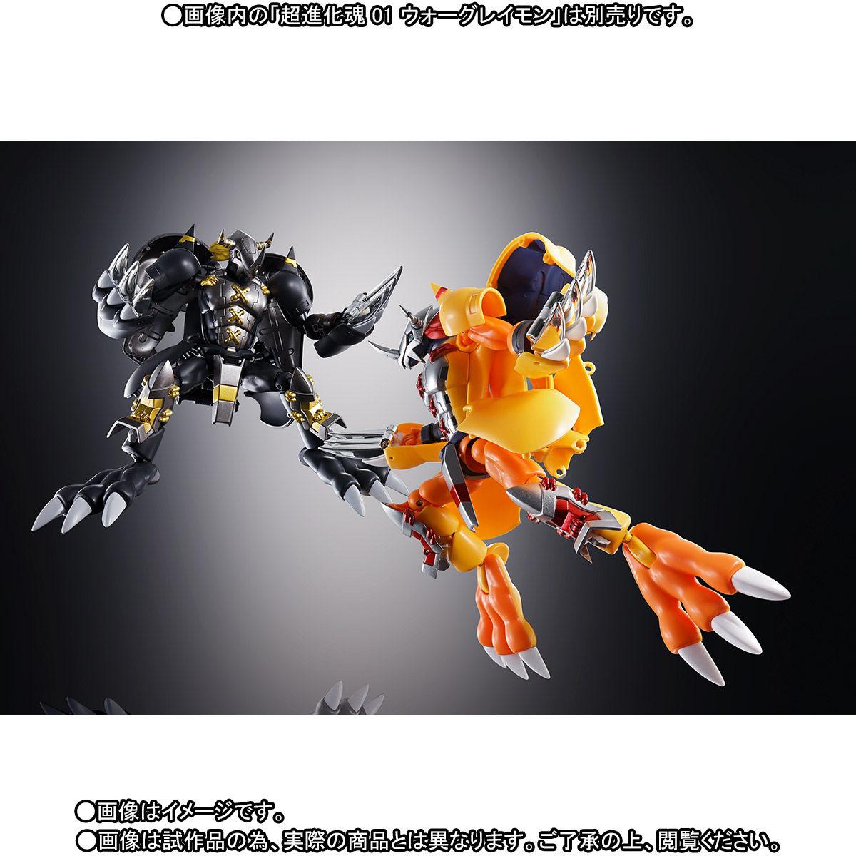 超進化魂 08『ブラックウォーグレイモン』デジモンアドベンチャー 可変可動フィギュア-008