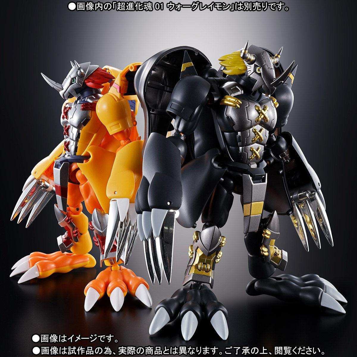 超進化魂 08『ブラックウォーグレイモン』デジモンアドベンチャー 可変可動フィギュア-009