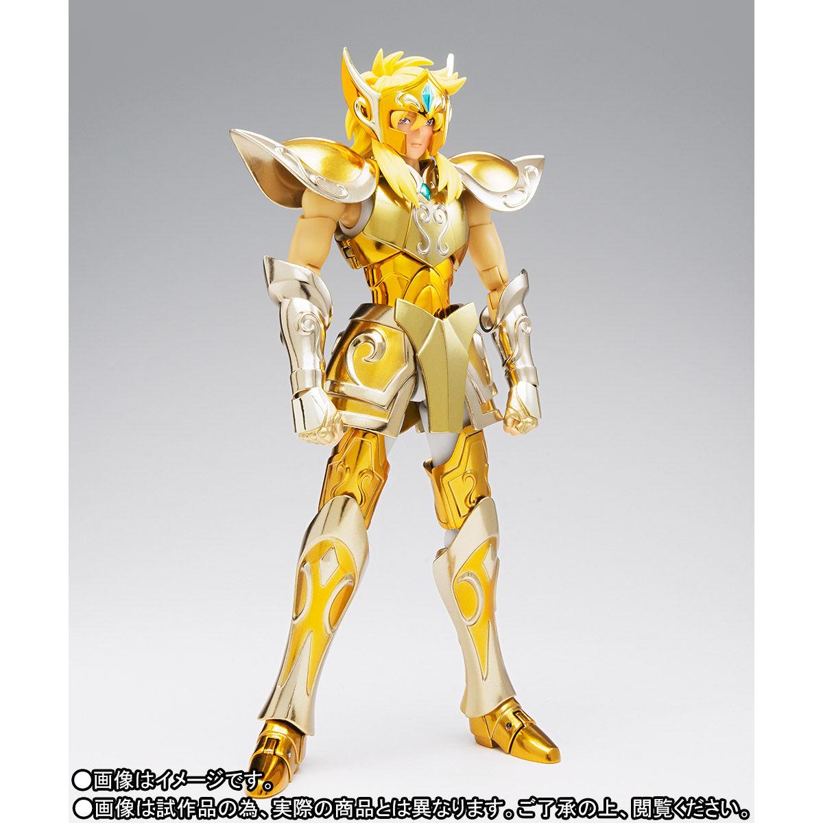 聖闘士聖衣神話EX『アクエリアス氷河』可動フィギュア-008