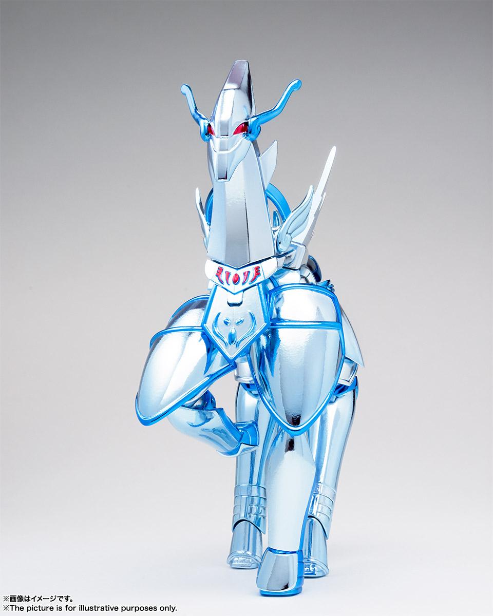 聖闘士聖衣神話『エクレウス翔子』聖闘士星矢 セインティア翔 可動フィギュア-005