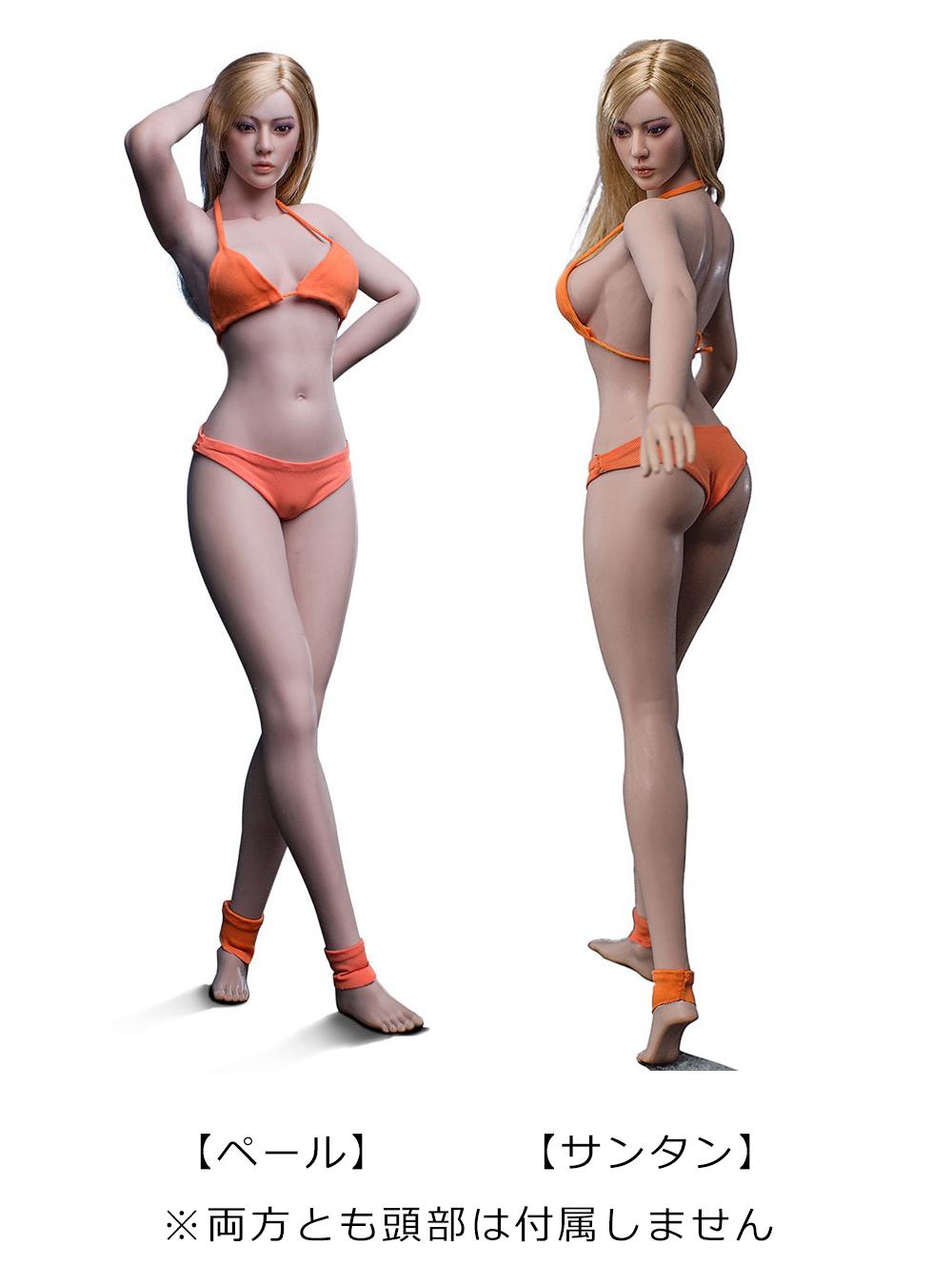 と モデル は 体型