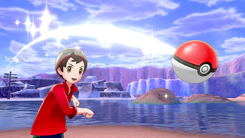 ニンテンドースイッチ『ポケットモンスター ソード・シールド[ダブルパック]』Nintendo Switch ゲーム-008