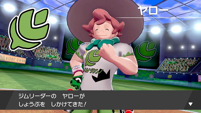 ニンテンドースイッチ『ポケットモンスター ソード・シールド[ダブルパック]』Nintendo Switch ゲーム-017