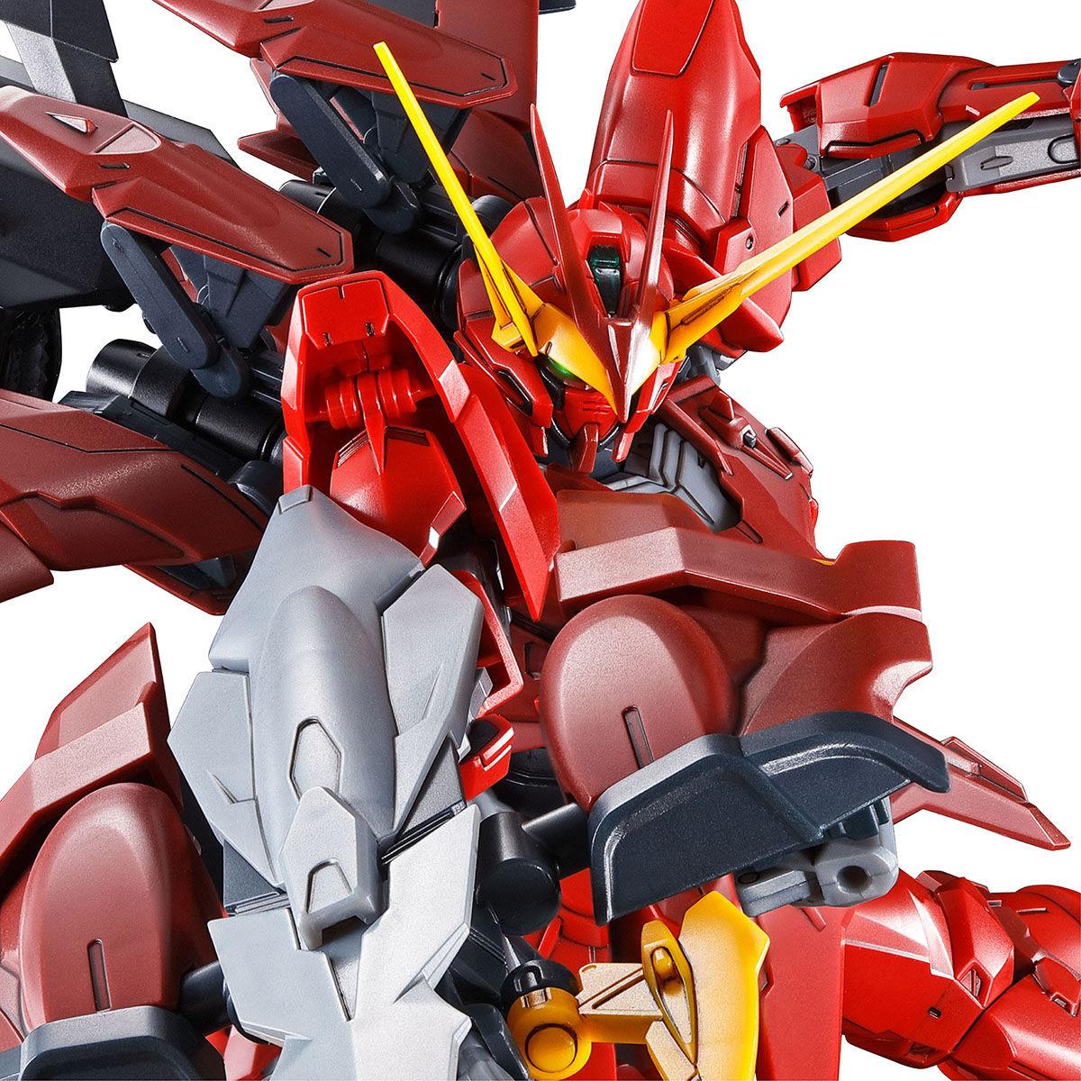 【限定販売】MG 1/100『テスタメントガンダム』ガンダムSEED DESTINY ASTRAY プラモデル-010
