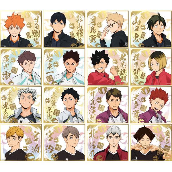 ハイキュー!!『ハイキュー!! ビジュアル色紙コレクション4』16個入りBOX-001
