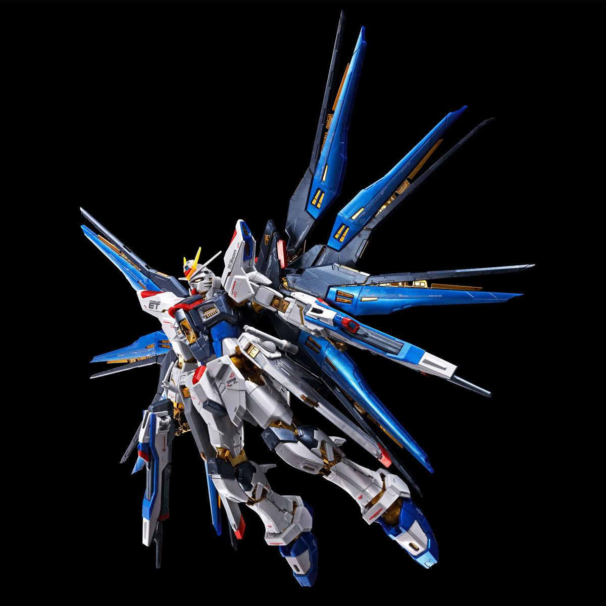 【限定販売】RG 1/144『ストライクフリーダムガンダム[チタニウムフィニッシュ]』機動戦士ガンダムSEED DESTINY プラモデル-006