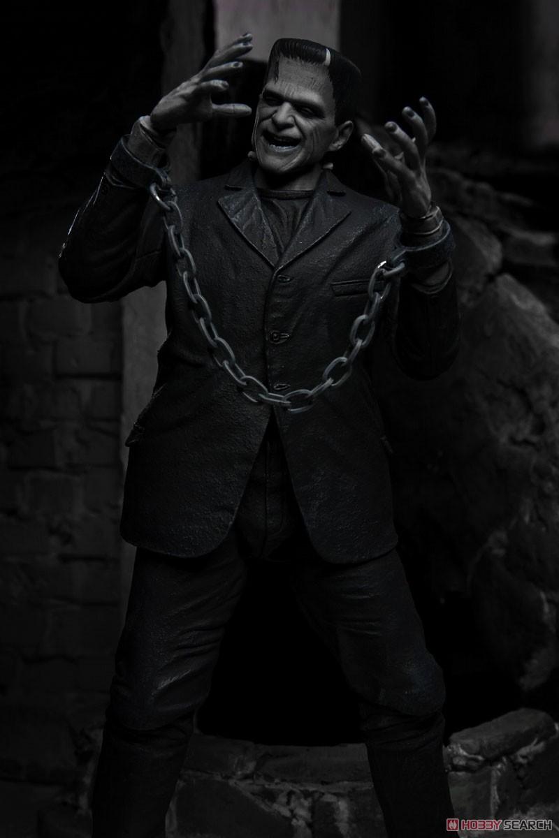 Frankenstein『フランケンシュタイン モンスター』アルティメット 7インチ アクションフィギュア-011