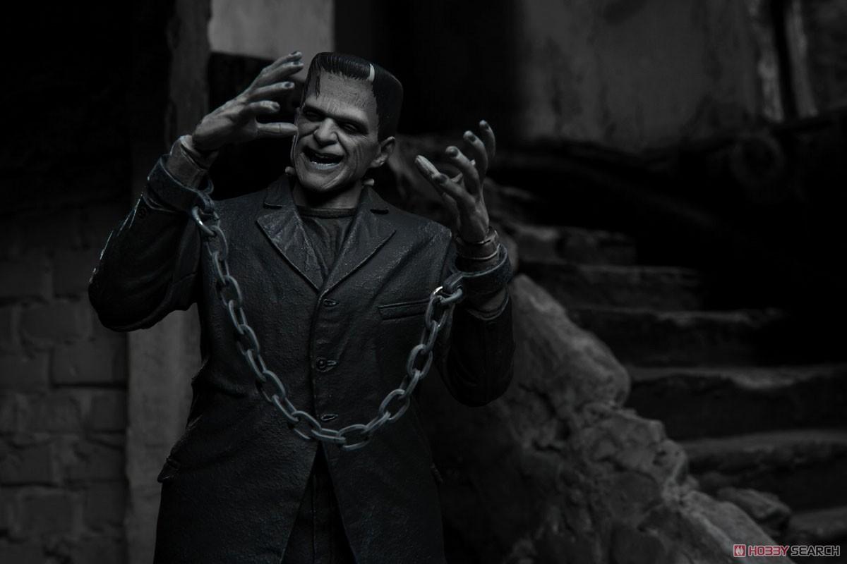 Frankenstein『フランケンシュタイン モンスター』アルティメット 7インチ アクションフィギュア-012