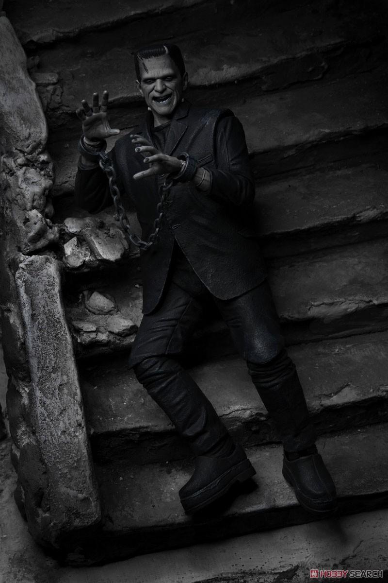 Frankenstein『フランケンシュタイン モンスター』アルティメット 7インチ アクションフィギュア-013