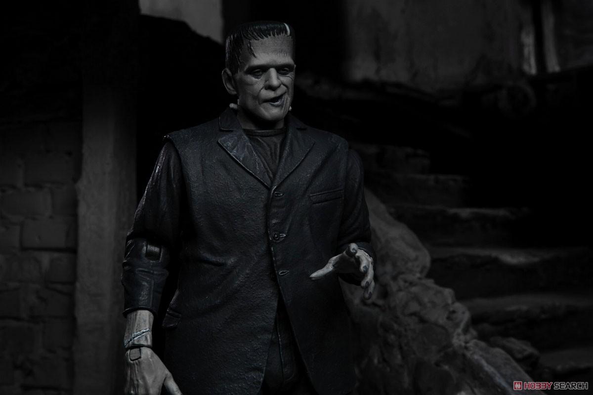 Frankenstein『フランケンシュタイン モンスター』アルティメット 7インチ アクションフィギュア-015