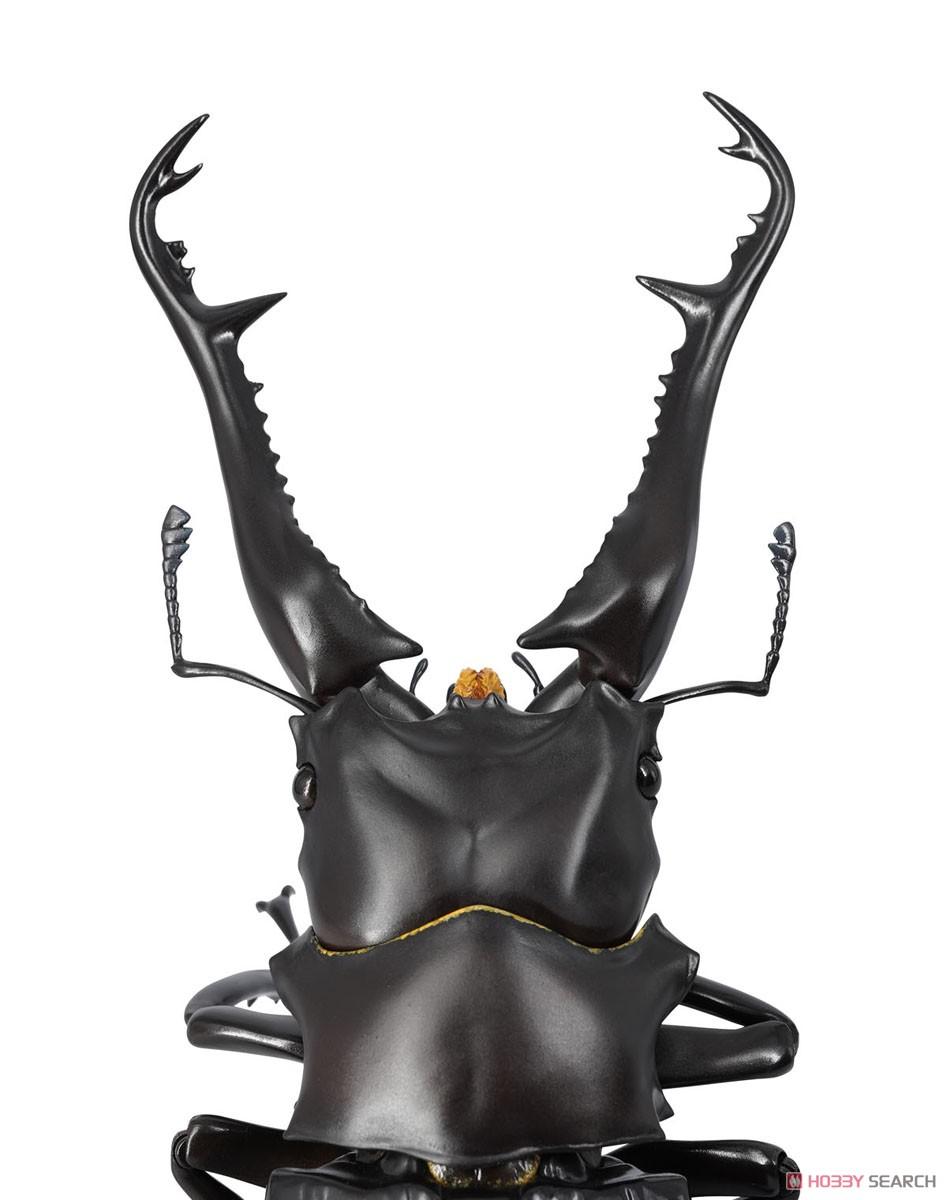 REVO GEO リボジオ『ギラファノコギリクワガタ(Prosopocoilus giraffa)』可動フィギュア-003