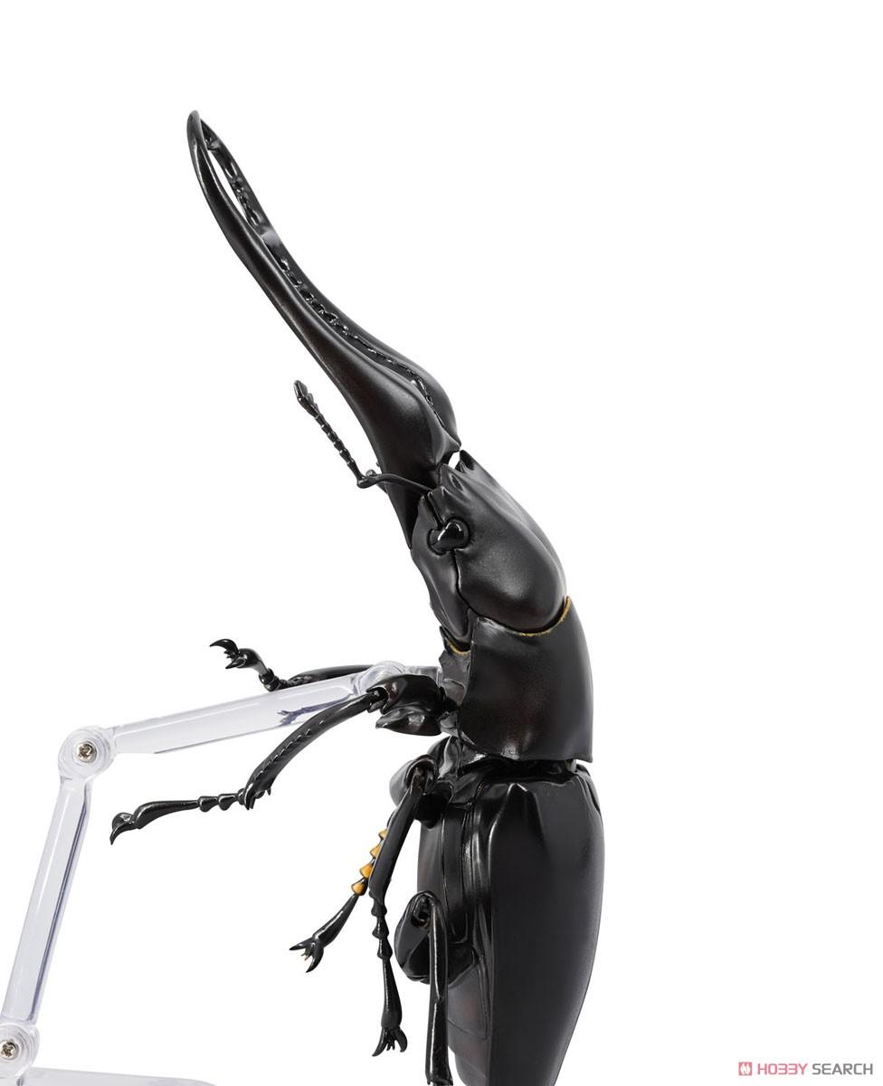 REVO GEO リボジオ『ギラファノコギリクワガタ(Prosopocoilus giraffa)』可動フィギュア-005